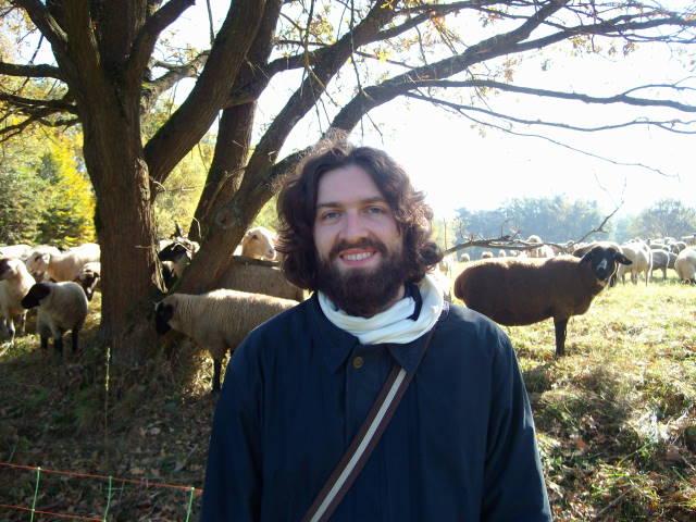 Dave mit Schafen 1
