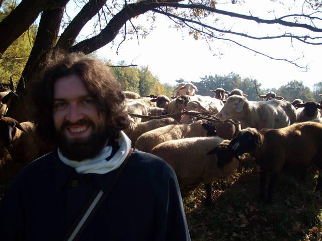 Dave mit Schafen 2
